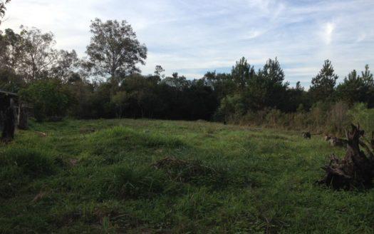 Terrenos lindos no Parque Eldorado - Atman Imóveis